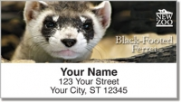 Click on NEW Zoo North American Natives Address Labels For More Details