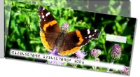 Click on Butterfly & Moth Side Tear For More Details