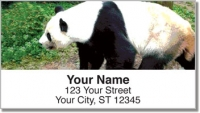 Click on Bears of the World Address Labels For More Details