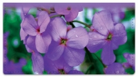 Click on Purple Flower Checkbook Cover For More Details