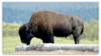 Click on American Bison Checkbook Cover For More Details