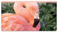 Click on Pink Flamingo Checkbook Cover For More Details