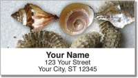 Click on Beach Finds Address Labels For More Details