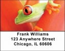 Click on Frogs Address Labels For More Details