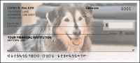Click on Identity Photo - 1 box Personal Checks For More Details