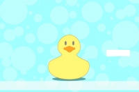 Click on Rubber Duckies Top Stub Personal Checks For More Details
