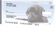 Coupon for Black Lab Puppies Side Tear Personal Checks from Carousel Checks