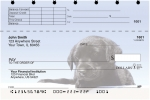 Click on Black Lab Puppies Top Stub Personal Checks For More Details