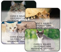 Click on Support Your Local Animal Shelter Cats Address Labels For More Details