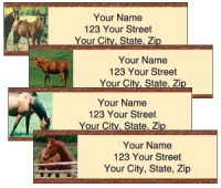 Click on Horses Labels For More Details